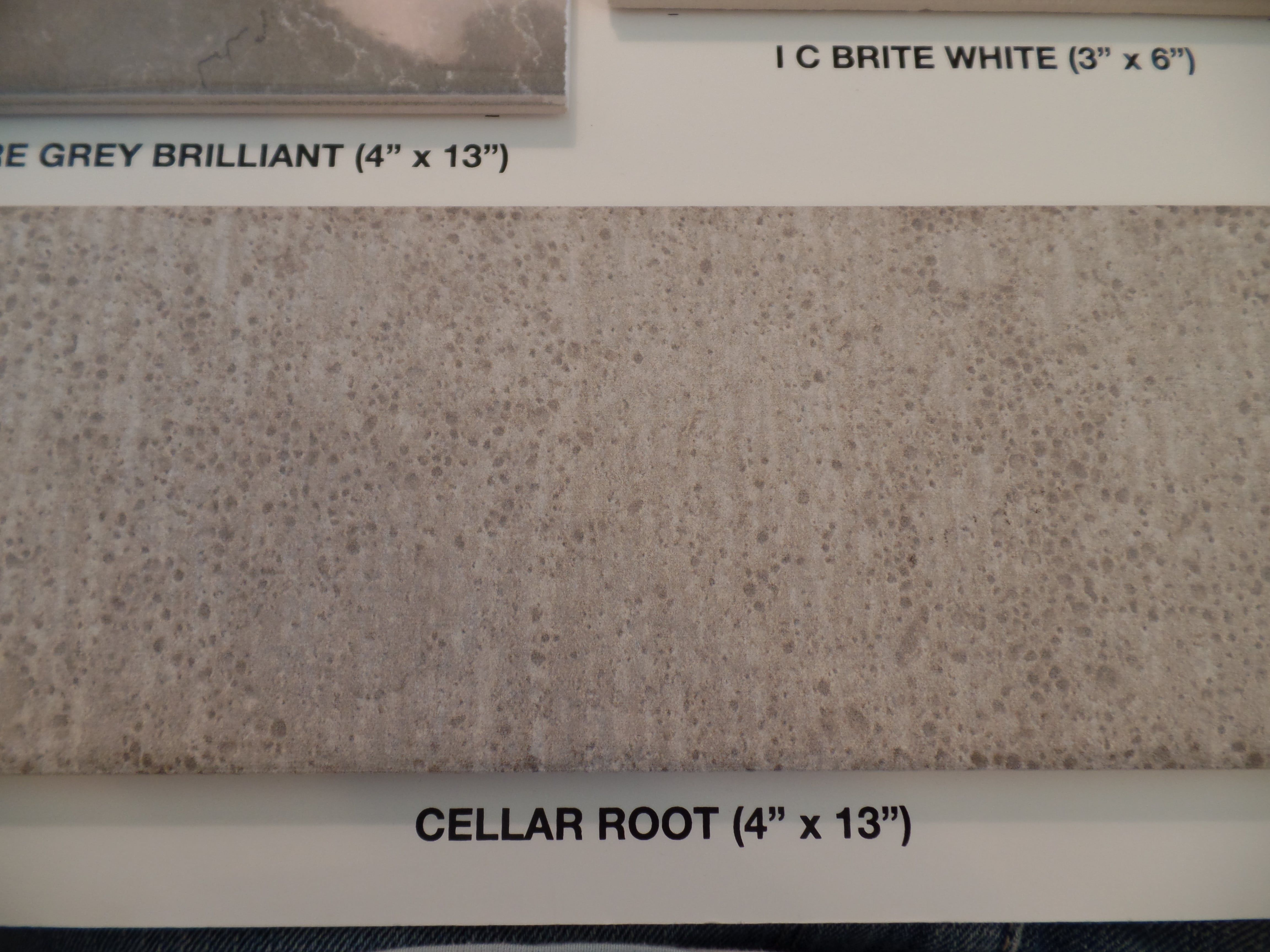 Tile - Cellar Root.jpg