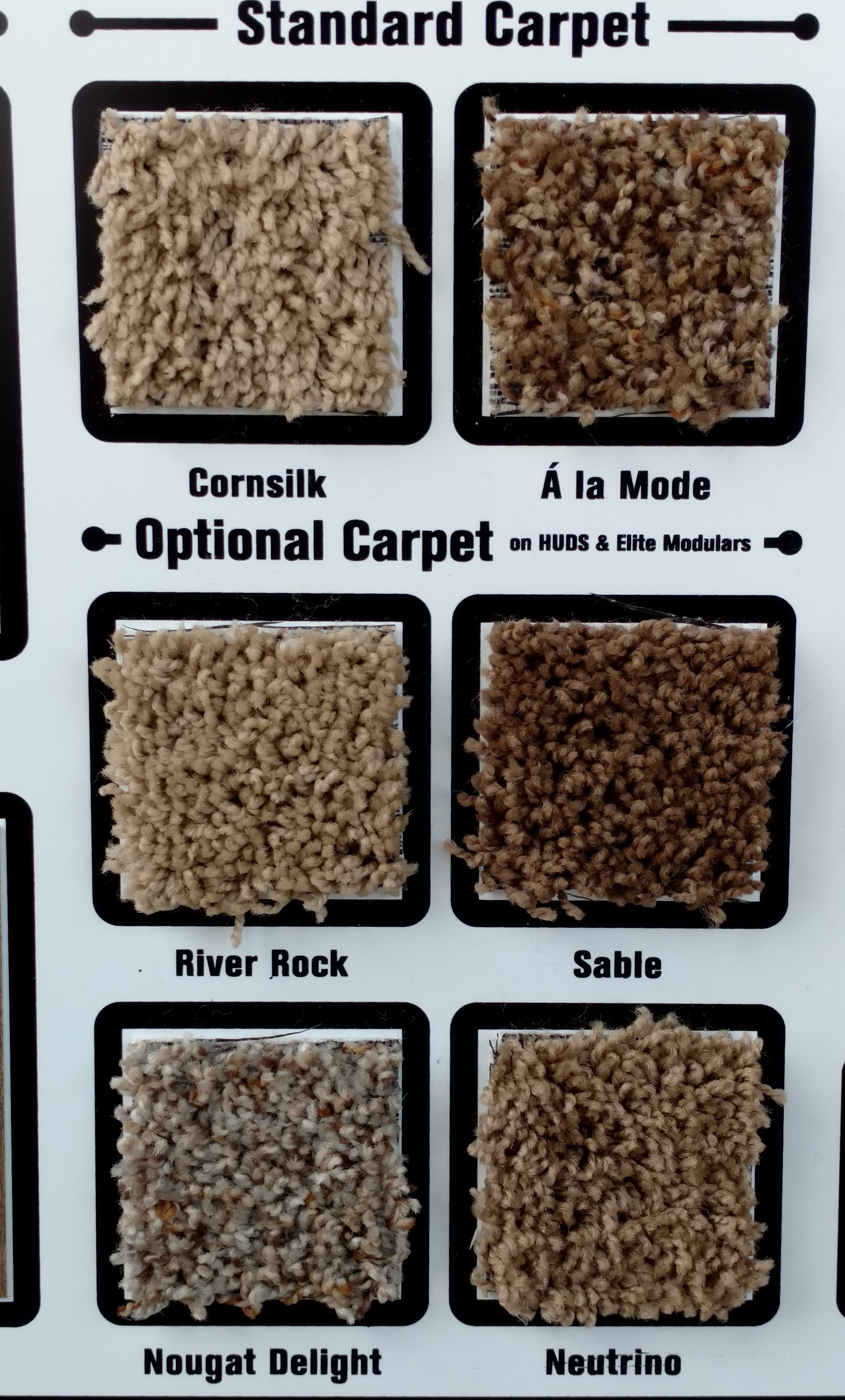 carpet options 2.jpg
