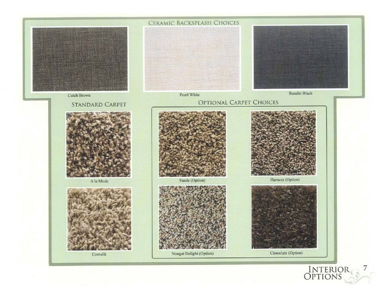 carpet options.jpg