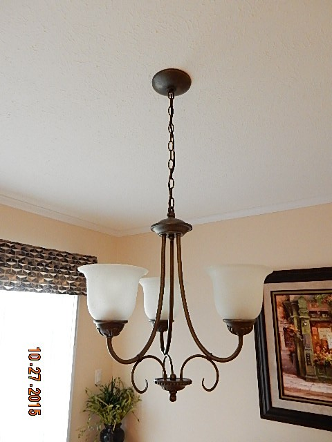 chandelier dining light.jpg