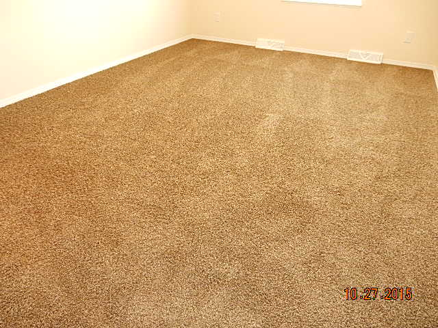 suede carpet option.jpg